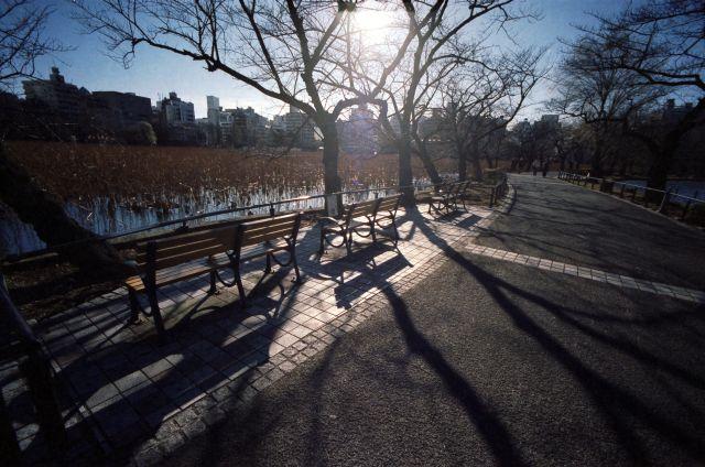 冬景色2013-03b
