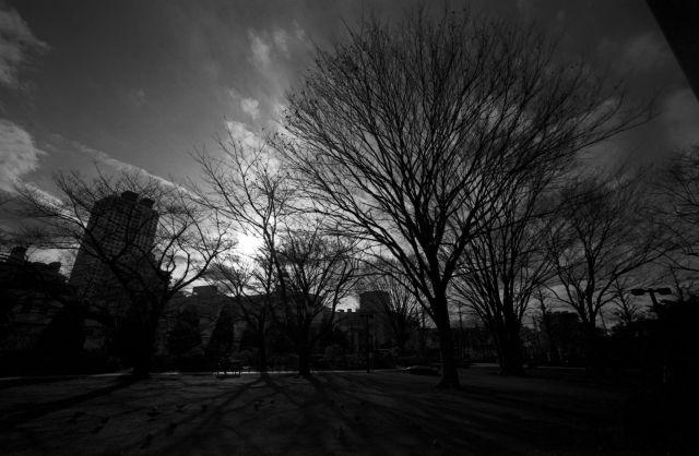 冬景色2013-04a