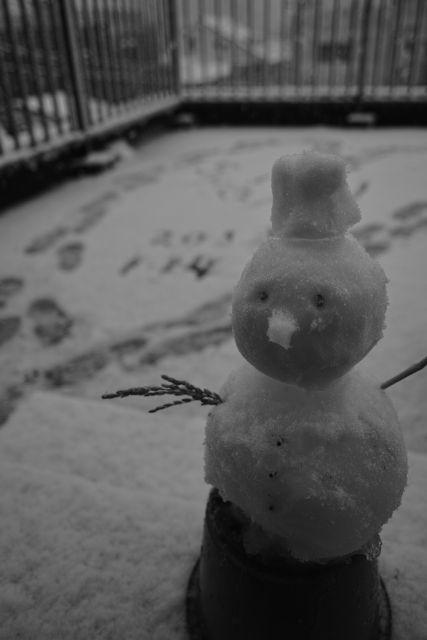 SnowMan01a