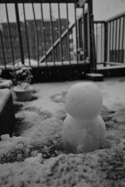 SnowMan01d