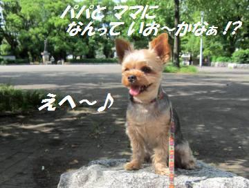 20120630(2).jpg