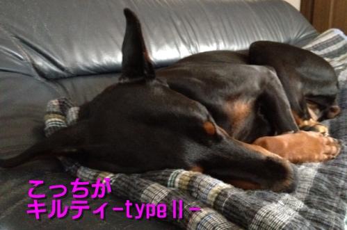 typeⅡ