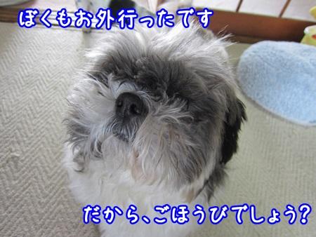 0326-04_20130326150113.jpg