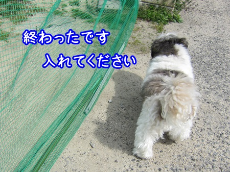 0401-03_20130401210645.jpg