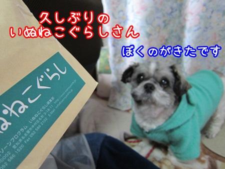 0406-01_20130406213603.jpg
