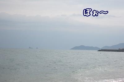 0325-海
