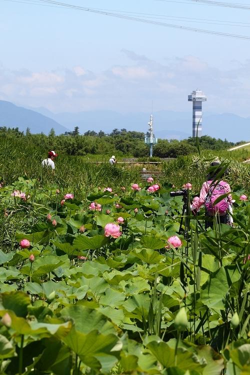 船頭平河川公園26