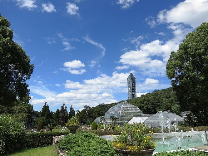 晩夏東山植物園21