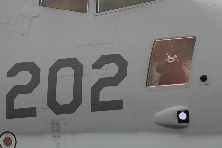 岐阜基地航空祭201204