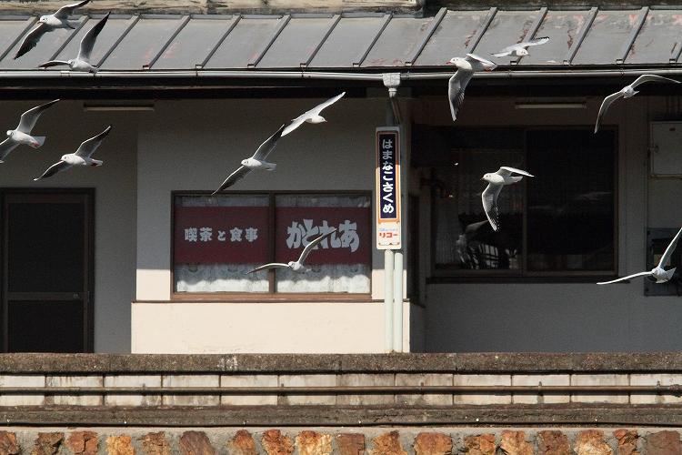 浜名湖佐久米駅03