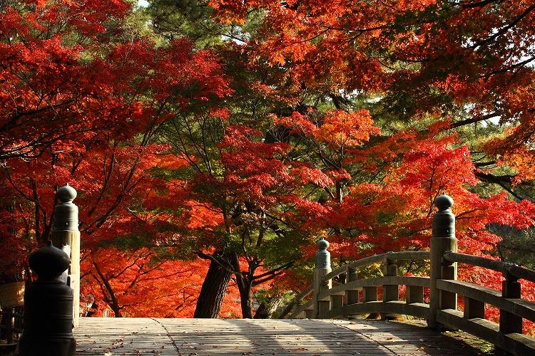 岡崎東公園05