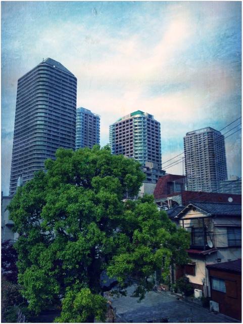 高層マンションと昭和家屋が混在しています。