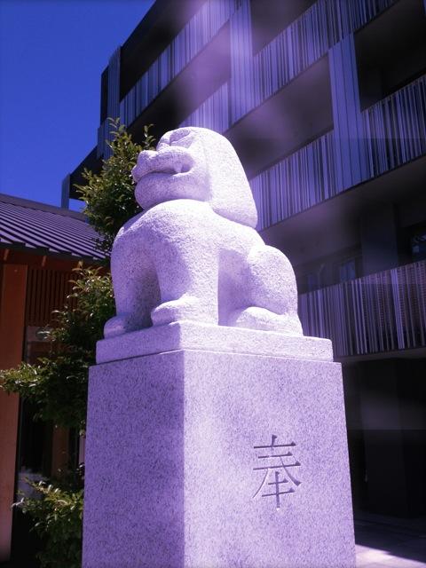 赤城神社の狛犬様(笑)