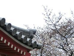 2012GW写真 006