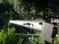 天竜峡つり橋