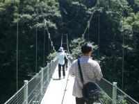 天竜峡つり橋揺らすB