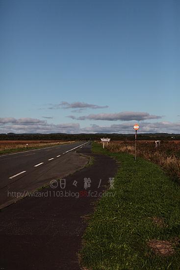 20121002_sarobetu4.jpg