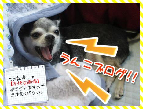 うんこブログ注意!