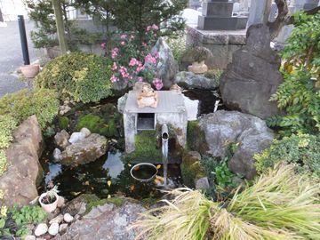 妙勝寺の井戸