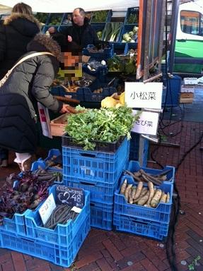 bio market
