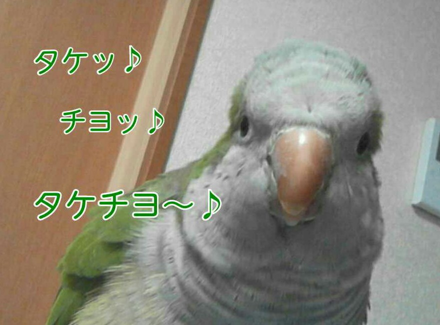 IMG_20130323_221333.jpg