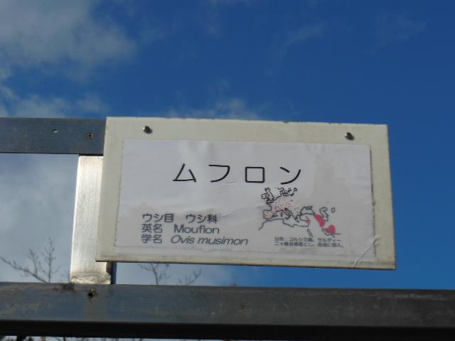 大阪天王寺 159