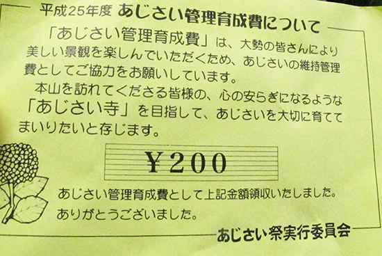 m_azisai_2.jpg