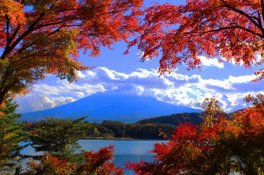 紅葉 紅葉トンネル 富士山