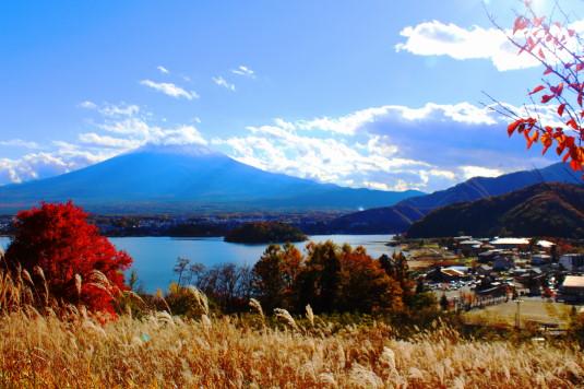 紅葉 河口湖キャンプ場 富士山