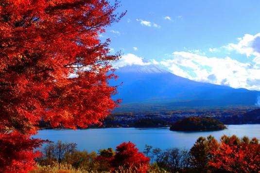 紅葉 河口湖キャンプ場 紅葉と富士山