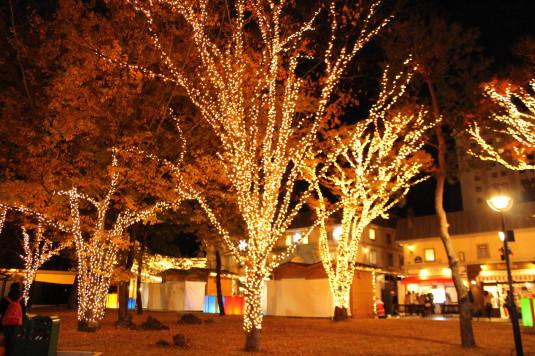 イルミ 富士急ハイランド 街路樹