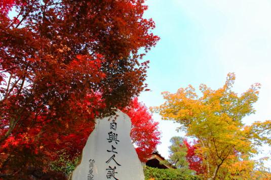 紅葉 蓮華寺 石碑