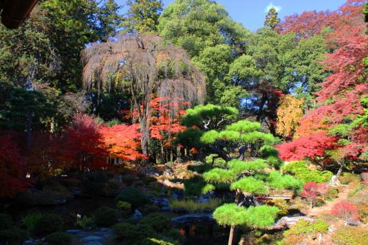 紅葉 恵林寺 庭園