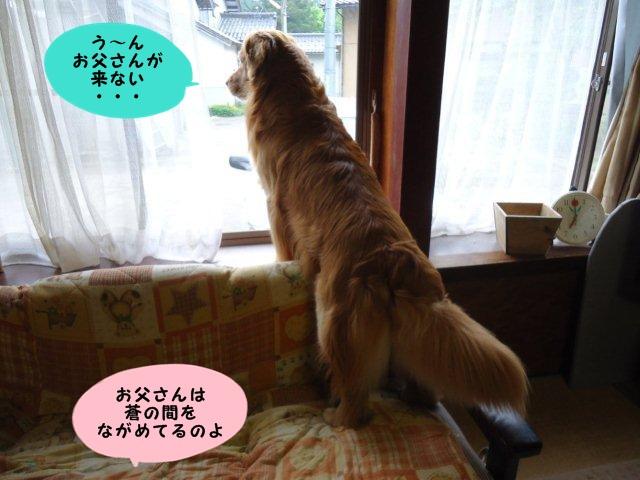 002_20120518203758.jpg