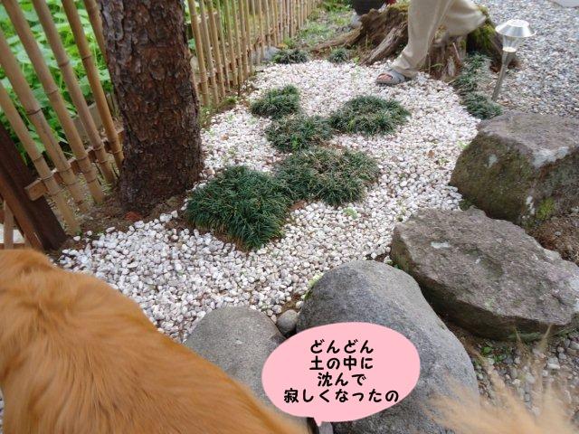002_20120525210838.jpg