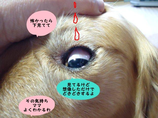 002_20120531213554.jpg