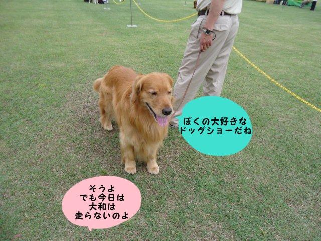 002_20120602202310.jpg