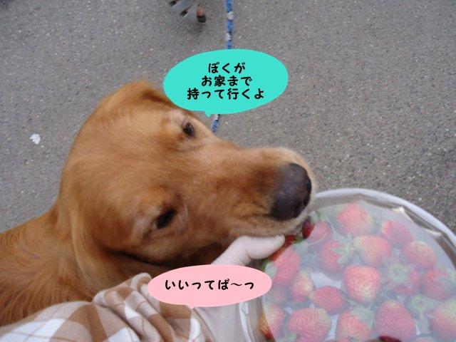 002_20120605202959.jpg