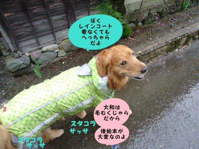 002_20120610194946.jpg