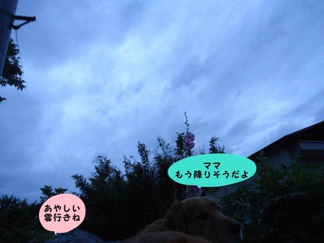 002_20120701205734.jpg