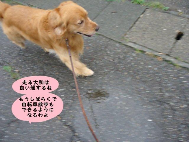 002_20120721214003.jpg