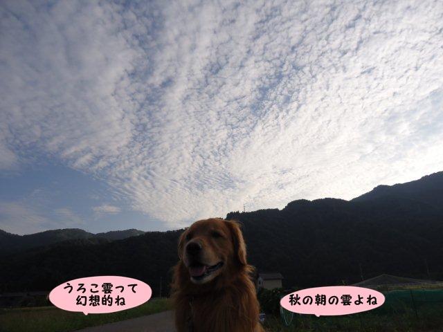 002_20120914130419.jpg