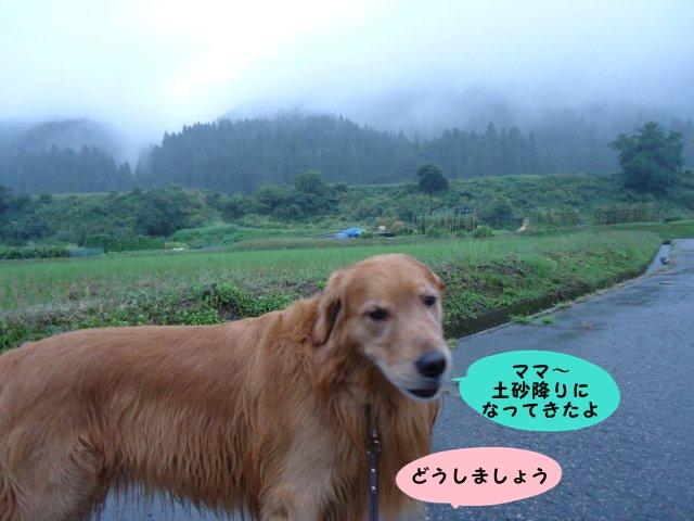 002_20121001201714.jpg