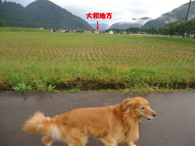 002_20121005210635.jpg