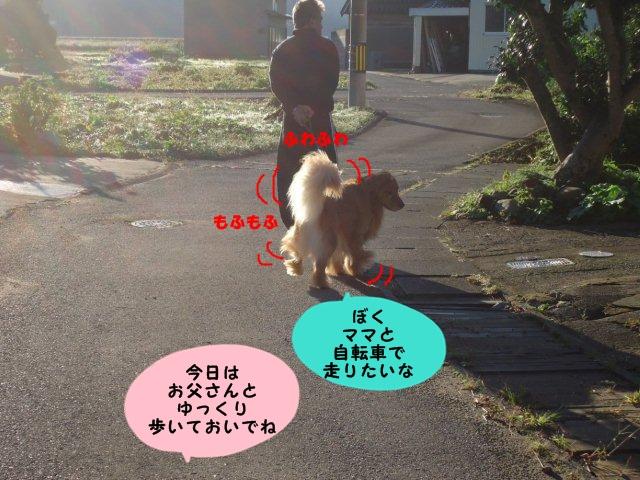 002_20121008204832.jpg