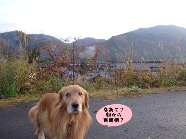 002_20121121201209.jpg