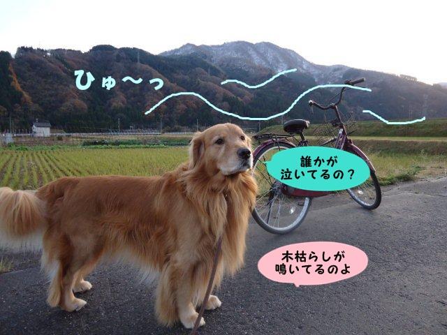 002_20121128210632.jpg