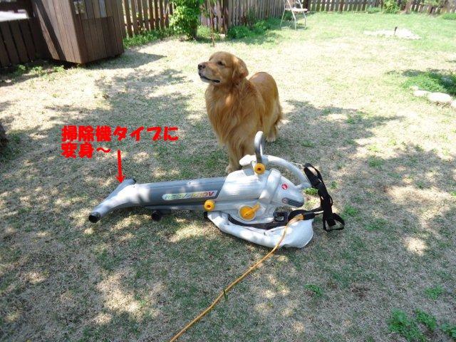 003_20120519201959.jpg