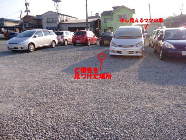 003_20120522213441.jpg