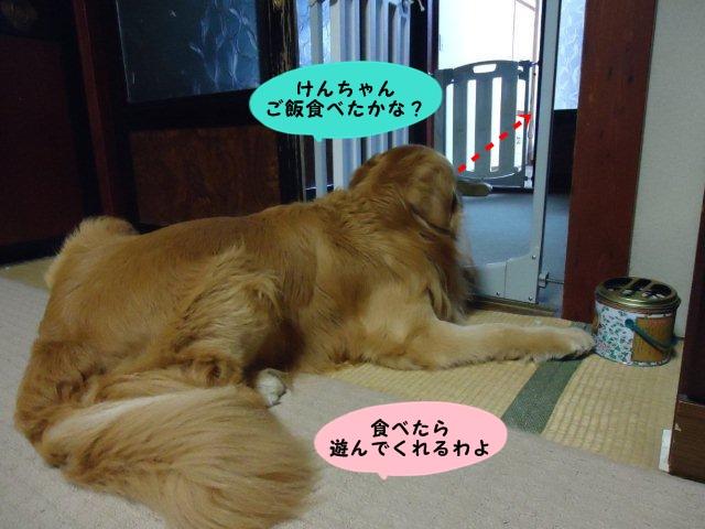 003_20120701205733.jpg